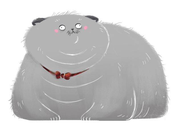 ilustración gato gordito